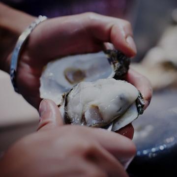Prahran Market Oysters