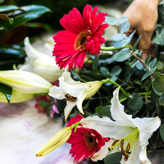 Clara's Flowers Flowers