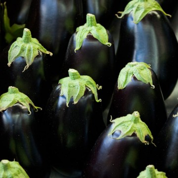 August Eggplant