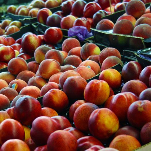 February Fruit
