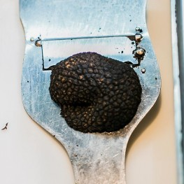 Hints and Tips Truffles
