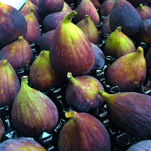 March Fruit Figs