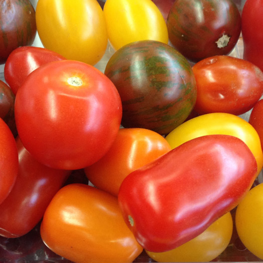 March tomatoes