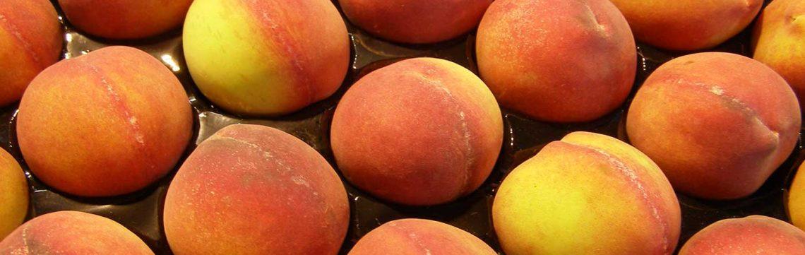 peach stone fruit recipes