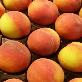 peach stone fruit recipes