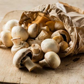 every day mushroom recipes