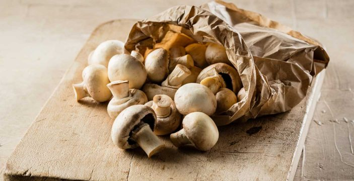 everyday mushroom recipes