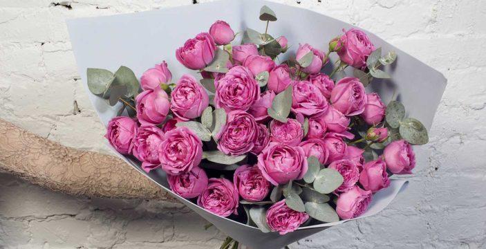 flowers, i got it from prahran market