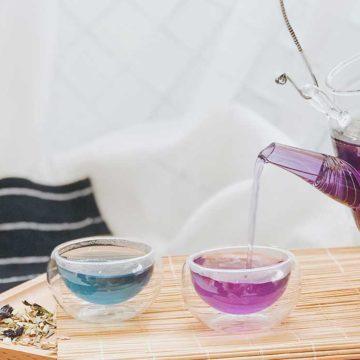 Blue Pea Flower Tea Tasting