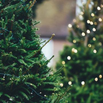 Christmas Insta comp