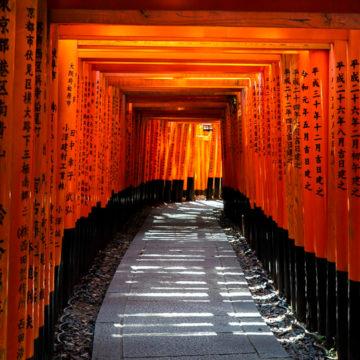 Kyoto Event - Fushimi-Inari Shrine Torii Gates